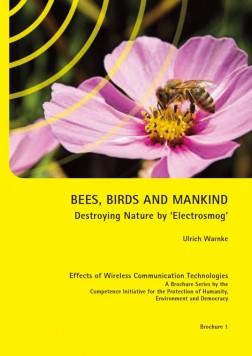 Bees birds mankind