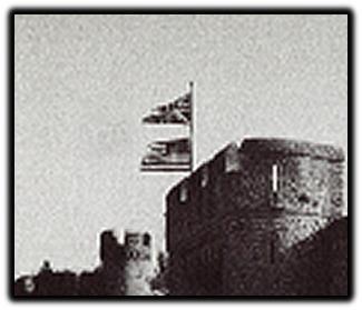 castle flag 1