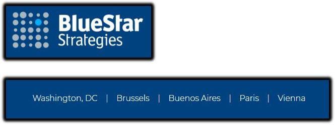 blue star strategies 1