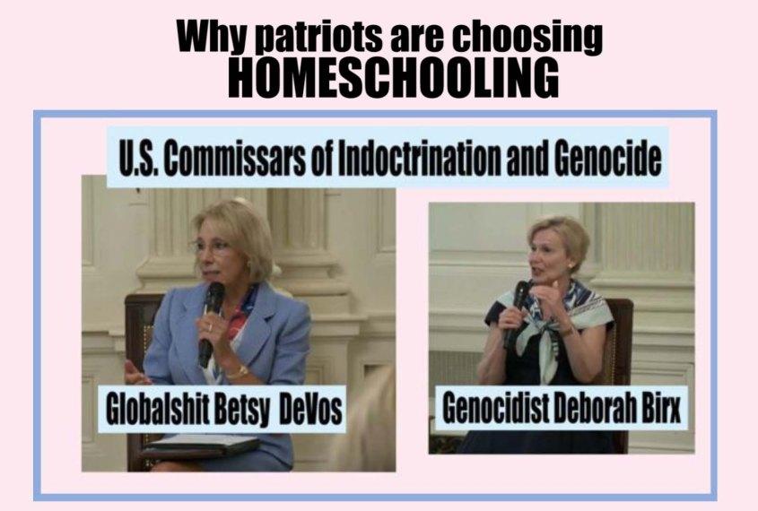 homeschooling birx devos