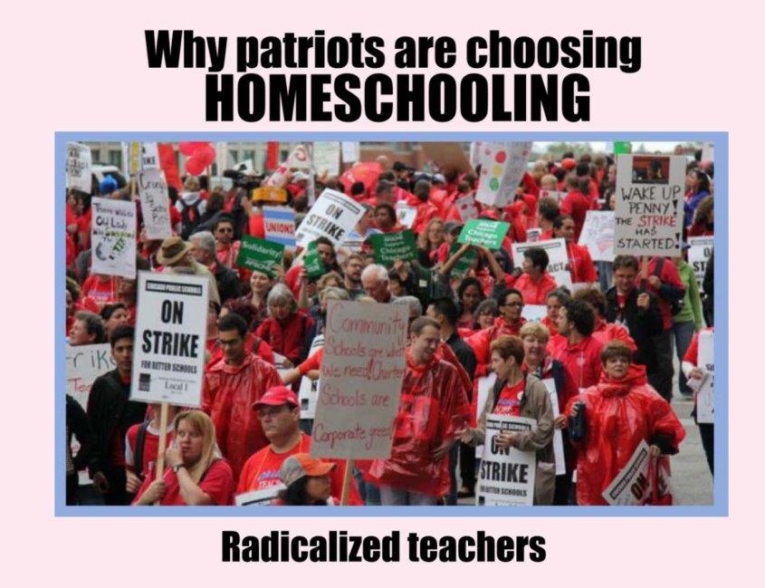 Homeschooling radicalized teachers